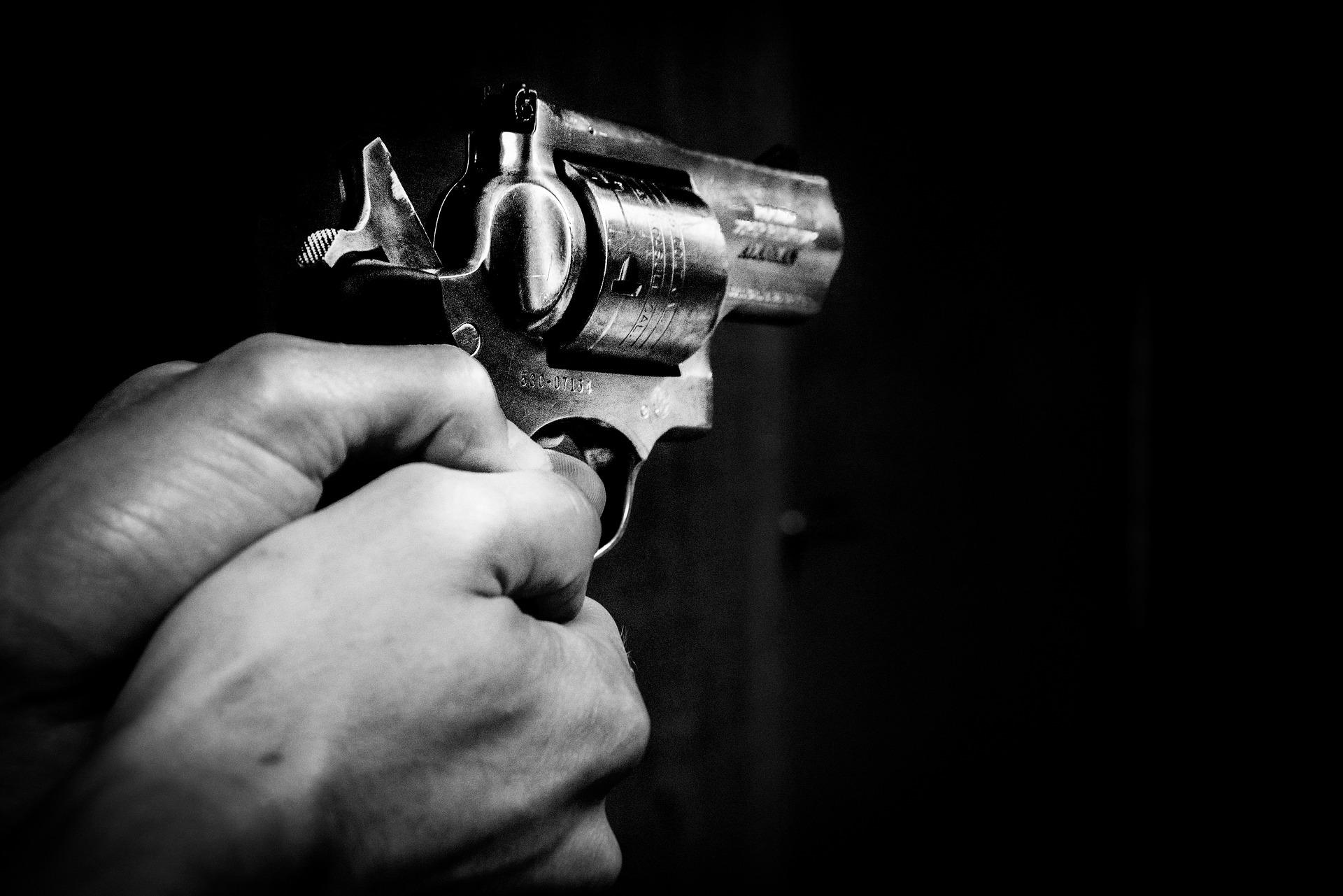 Ruger Revolver Colt Revolver
